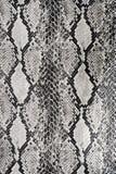 纹理背景蛇皮革 库存照片
