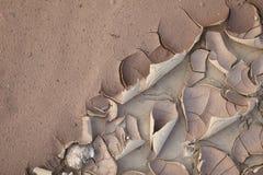 纹理被绘的墙壁 免版税库存照片