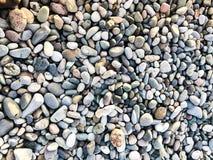 纹理许多多彩多姿的美好的回合和卵形光滑的自然石头,小卵石 ?? 库存图片