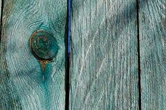 纹理锯切注册沿年轮被削减的纵切面陈列 免版税图库摄影