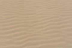纹理,样式,沙子背景在Maspalomas沙丘,盛大金丝雀的 库存照片