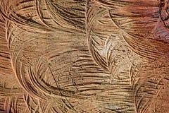 纹理,背景,自然木头 免版税库存照片
