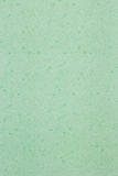 纹理,绿色纸背景是空白页 免版税库存照片