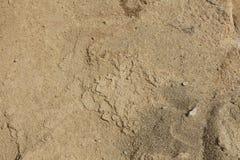 纹理–砂岩 免版税库存照片