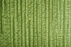 纹理绿色背景资料,小条 库存照片