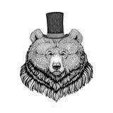 纹身花刺的,商标,象征,徽章设计北美灰熊行家样式动物图象 向量例证