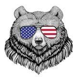 纹身花刺的, t北美灰熊大狂放的熊手拉的例证 库存例证