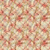 纺织品样式设计 格子花呢披肩和链子 皇族释放例证
