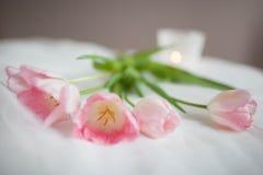 纺织品与桃红色郁金香和蜡烛的婚礼背景 妇女` s天 库存照片