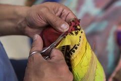 纺织品恢复 库存照片