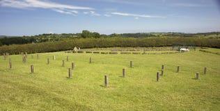 纽格莱奇墓 免版税库存照片