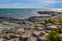 纽波特,罗德岛州岩石海岸  免版税库存图片