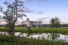 纽瓦克小修道院废墟 免版税库存照片