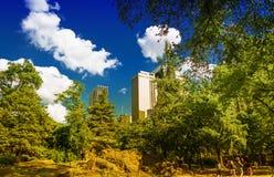 纽约中央公园在与曼哈顿的一个晴朗的夏日 库存图片