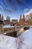 纽约中央公园在冬天 库存图片