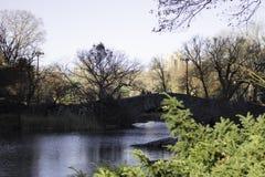 纽约中央公园桥梁  免版税库存照片