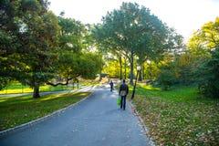 纽约中央公园  免版税库存照片