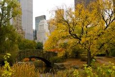 纽约地平线和中央公园在秋天 免版税库存照片