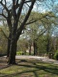 纽约城,中央公园 免版税库存图片