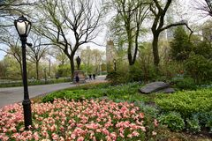 纽约庭院,中央公园 免版税库存照片