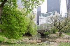 纽约庭院,中央公园 库存图片