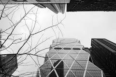 纽约摩天大楼 免版税库存图片