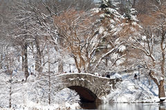 纽约曼哈顿中央公园在与桥梁的冬天在有雪的湖 库存照片