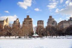 纽约曼哈顿中央公园在冬天 免版税图库摄影