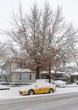 纽约染黄出租汽车在雪下在布鲁克林,在巨型的冬天风暴托尔期间的NY 免版税库存图片