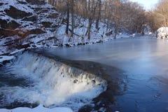 纽约植物园瀑布 库存图片