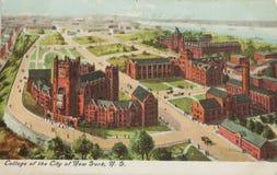 纽约的学院 库存图片
