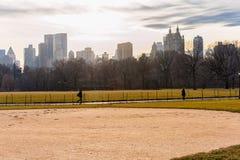 纽约,纽约- 2014年1月13日:NYC的中央公园 都市风景在背景中 库存图片