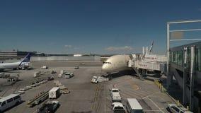 纽约,美国阿联酋联合航空在JFK机场的空中客车A380-800 影视素材