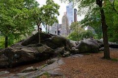 纽约,美国, - 2018年5月21日:停留在中央公园,曼哈顿,纽约的人们 免版税库存照片
