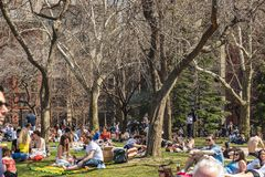 纽约,美国- 2018年4月14日:人享用一个夏天晴天在公园,西部村庄,纽约 免版税库存图片