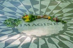 纽约,美国- 2016年11月22日:草莓在纽约,美国调遣在中央公园地板的马赛克  图库摄影