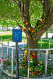 纽约,美国- 2017年5月05日:花在世界贸易中心一号大楼,从被找出的街道水平的看法附近的纪念博物馆  免版税库存照片