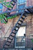纽约:在一个阳台的一只乌鸦2014年9月16日的生产线上限的 库存照片