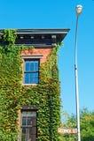 纽约:在常春藤盖的房子在2014年9月15日的格林尼治村 库存照片