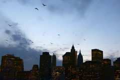 纽约 曼哈顿夜 库存照片