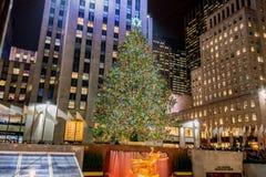 纽约- 2013年12月20日:在洛克菲勒分的圣诞树 免版税库存图片
