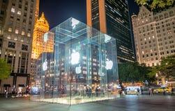 纽约- 2015年10月23日:对苹果计算机旗舰的入口 库存照片