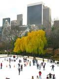 纽约- 12月3 :溜冰者获得乐趣在中央公园 库存照片
