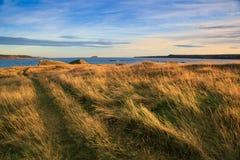 纽芬兰与拉布拉多风景海岸线  免版税库存照片