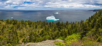 纽芬兰海岸全景风景与冰山的 免版税库存图片