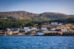 纽芬兰海岸线 免版税库存图片