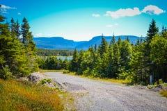 纽芬兰/加拿大- 2014年8月:在纽芬兰的夏天 图库摄影