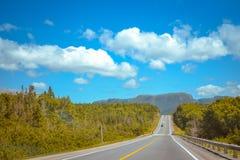 纽芬兰/加拿大- 2014年8月:在纽芬兰的夏天 免版税库存图片