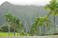 线路山向结构树的掌上型计算机路 免版税库存照片