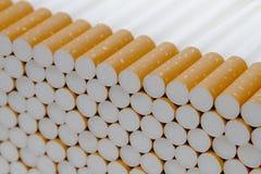 线香烟2 图库摄影